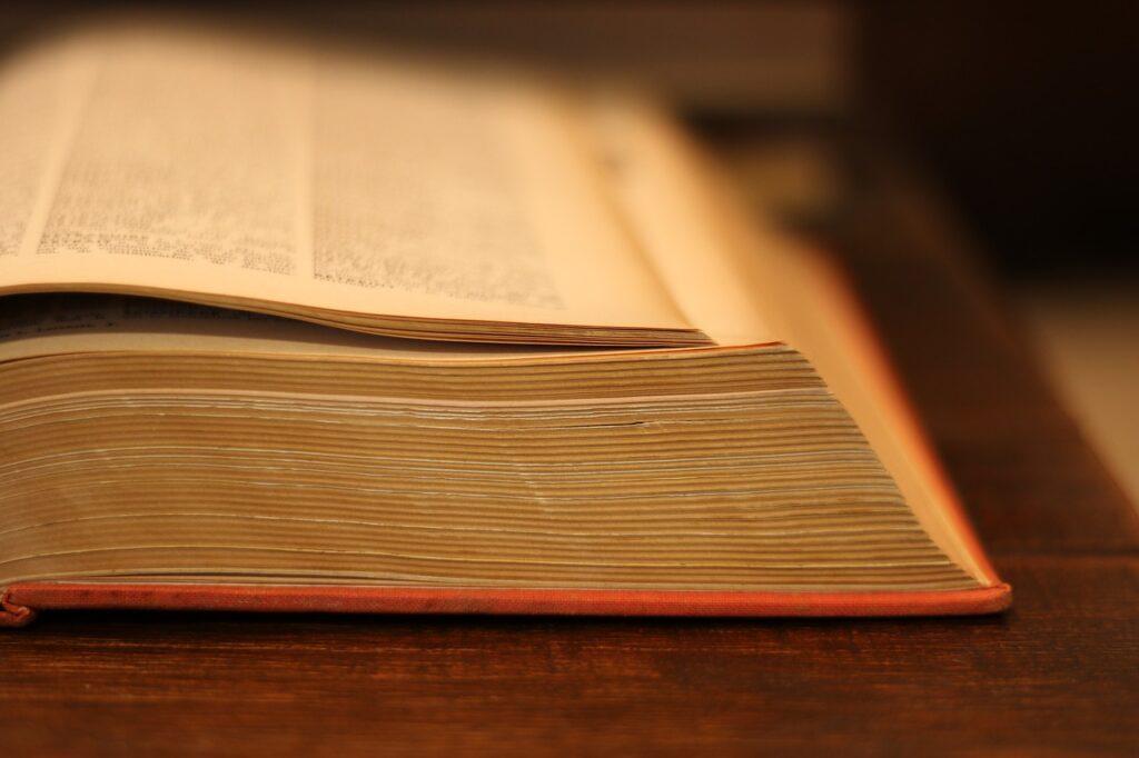 Czy warto studiować socjologię?